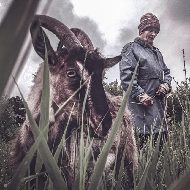 Фотограф из Пскова получил премию за лучшие фото в Instagram 0 144635 9ce9c823 orig