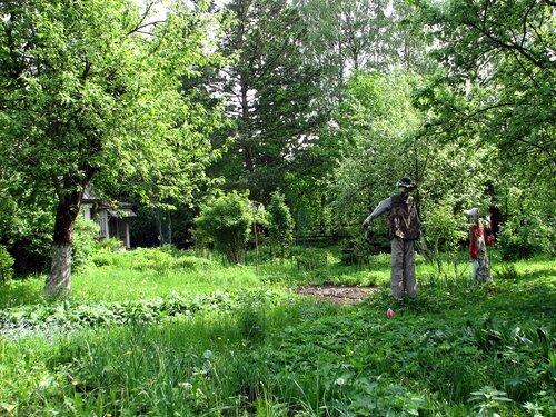Старый, старый сад