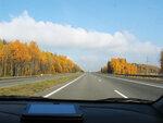 осень под минском, середина октября