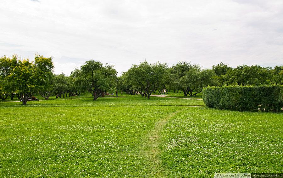 Вознесенский сад (Коломенское, Москва)