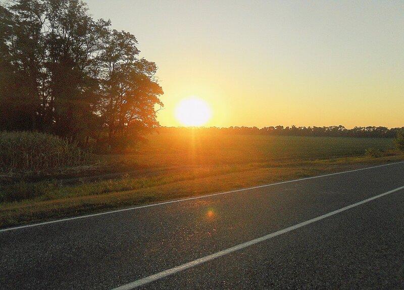 Набирает Солнце силу утренней порою ... SAM_8752.JPG