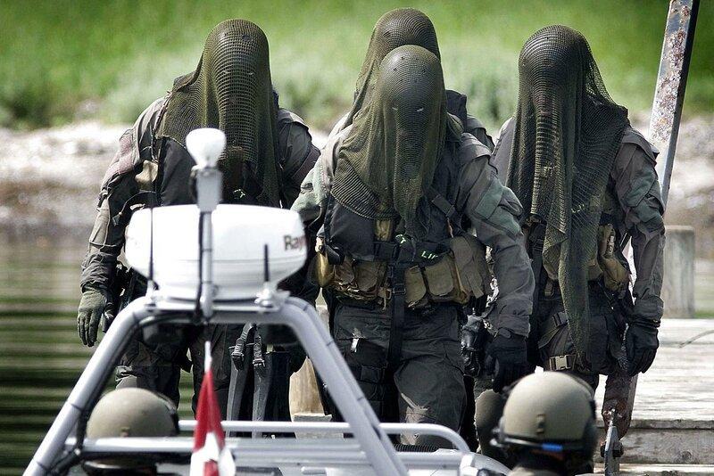 Элитные войска Дании
