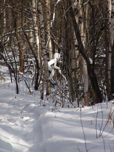 Снежный человечек