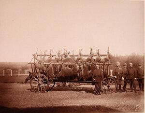 Группа [егерей] у телеги с убитыми на охоте кабанами.