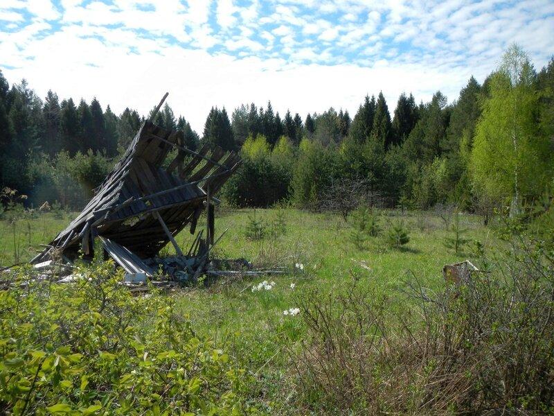 Развалины заброшенных садов в окрестностях Чепецка