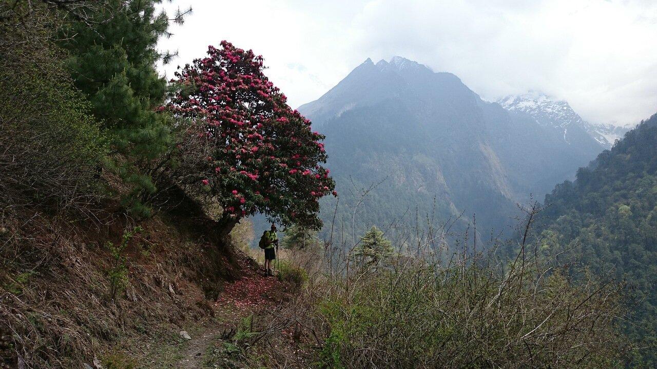 tsum valley. nepal