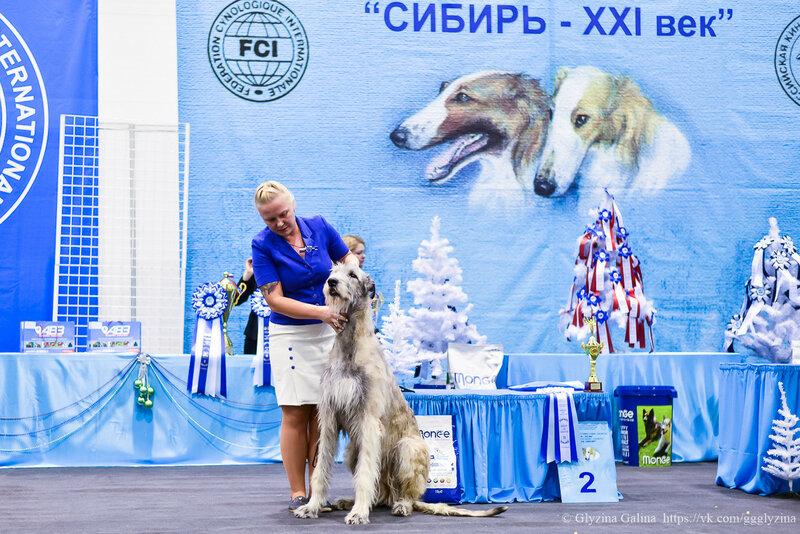 https://img-fotki.yandex.ru/get/6707/5306260.85/0_16c6dc_db477588_XL.jpg