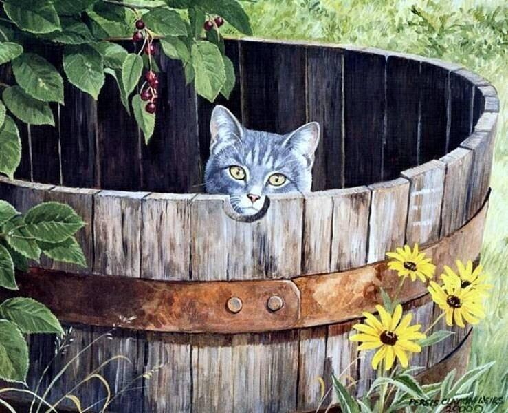 О проказниках кошках. Где угодно кошки спят! Кошки спят, где захотят!