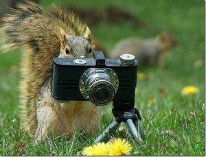 http://img-fotki.yandex.ru/get/6708/194408087.3/0_a03eb_85a527e8_M.jpg