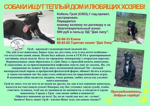 http://img-fotki.yandex.ru/get/6708/5007246.1/0_b9384_9364eeb0_L.jpg