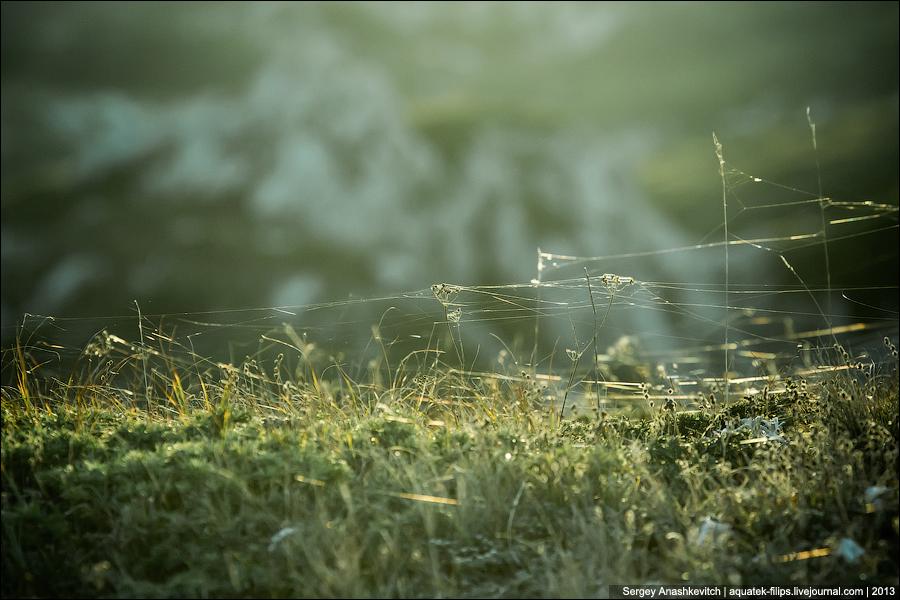 Волшебная зелень Чатыр-Дага