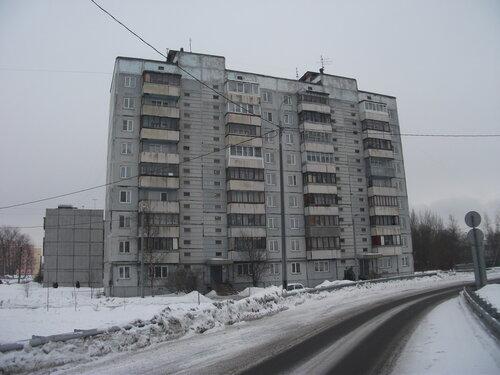 Рябовское шоссе 117к2