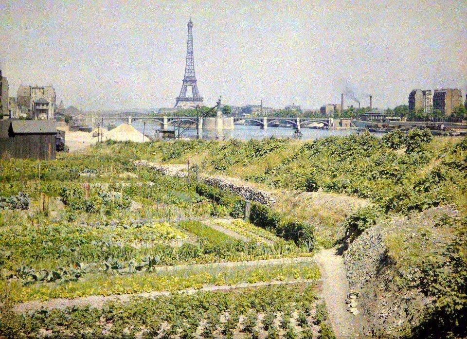 1918. Огороды на нынешней набережной Луи Блерио