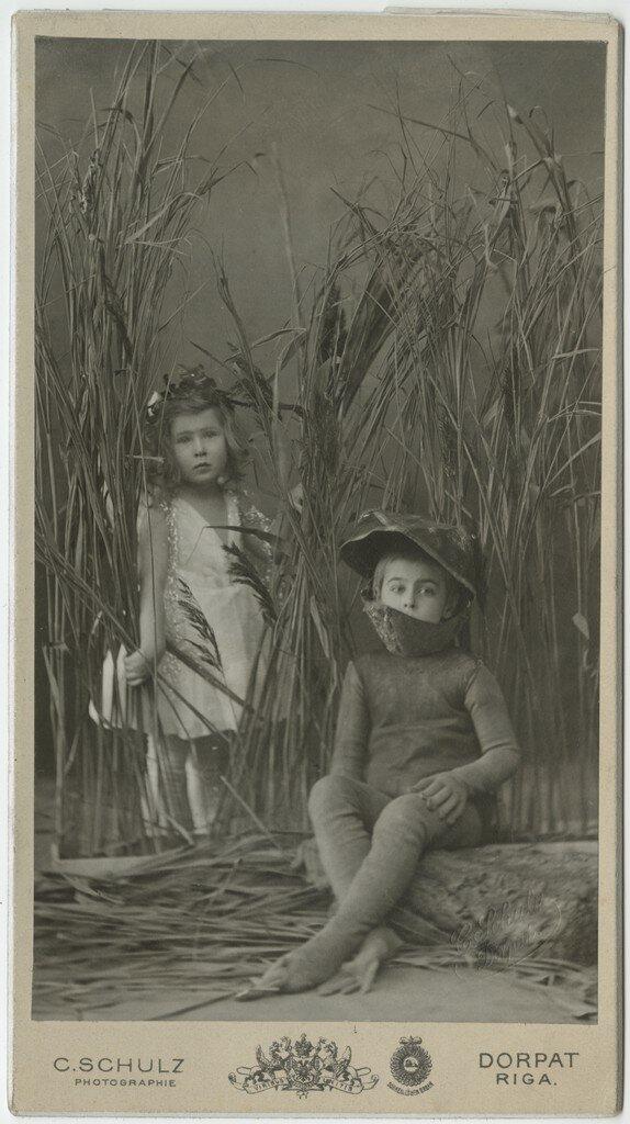 1870-е. Принцесса и лягушка