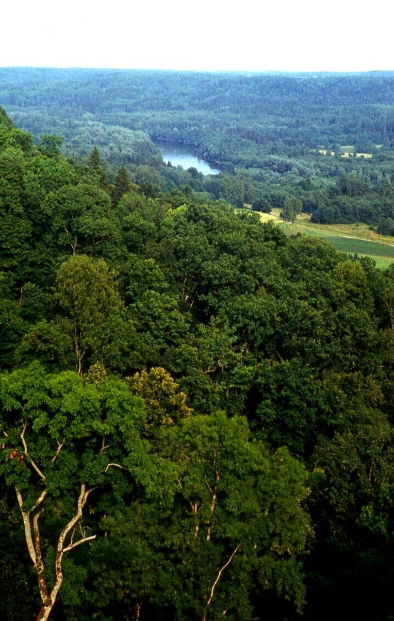 15. Долина  реки  Гауи