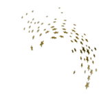 Gold Neon Stars Effect 1.png