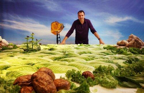 Карл  Уорнер (Carl Warner): Пейзажи из еды и не только...