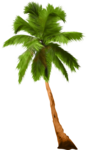tree (38).png
