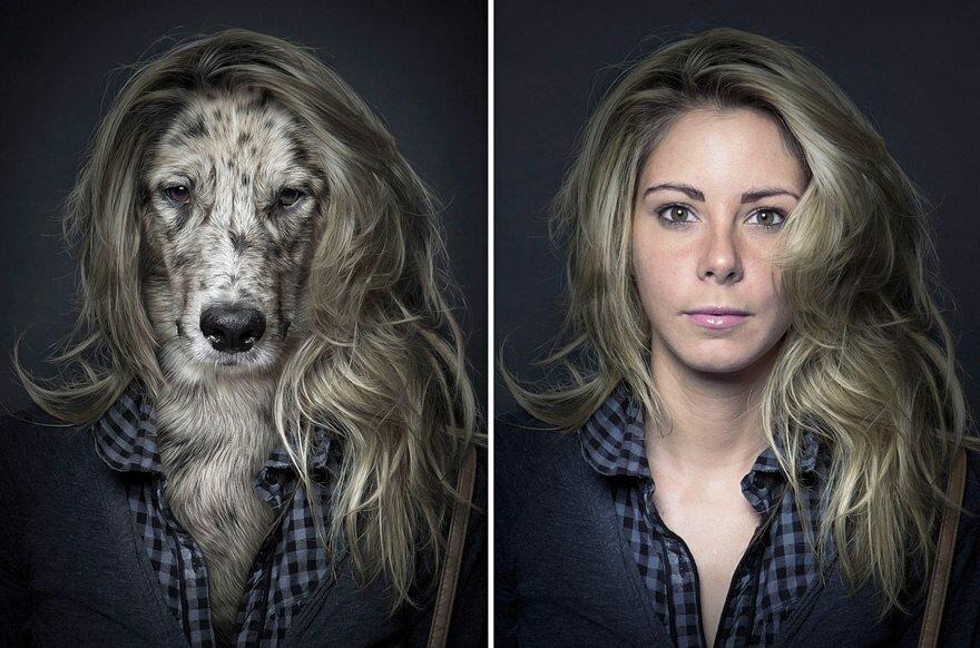 собаки и хозяева