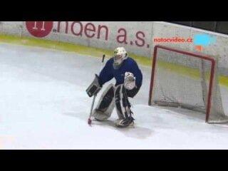 Пьяный хоккейный вратарь