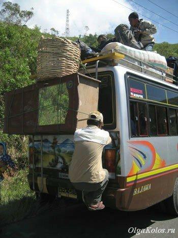 Автобусы на Флоресе