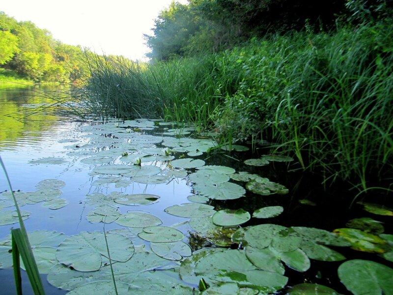 На реке Хопёр, лето 2012