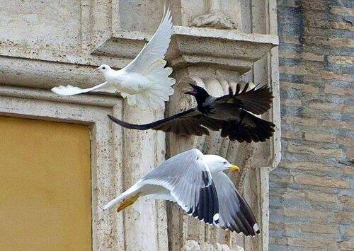Драма в Риме.