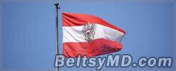 Австрия выдаст России  банкира Александра Гительсона
