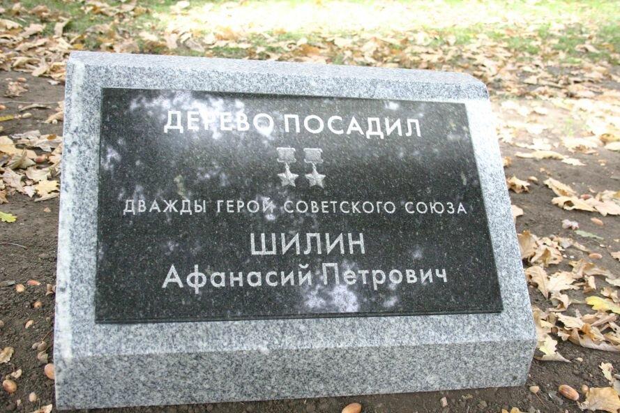 Фотофакт: В Запорожье подписали дубы, высаженные освободителями города, фото-3