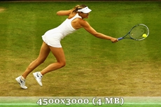 http://img-fotki.yandex.ru/get/6710/14186792.3b/0_d97b5_65f1ade4_orig.jpg