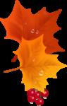 Осень137