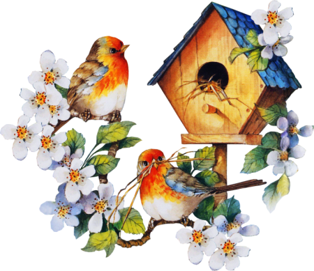 Birdhouse26_dhedey.png