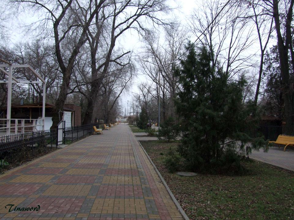 декабрь-в-парке-5.jpg