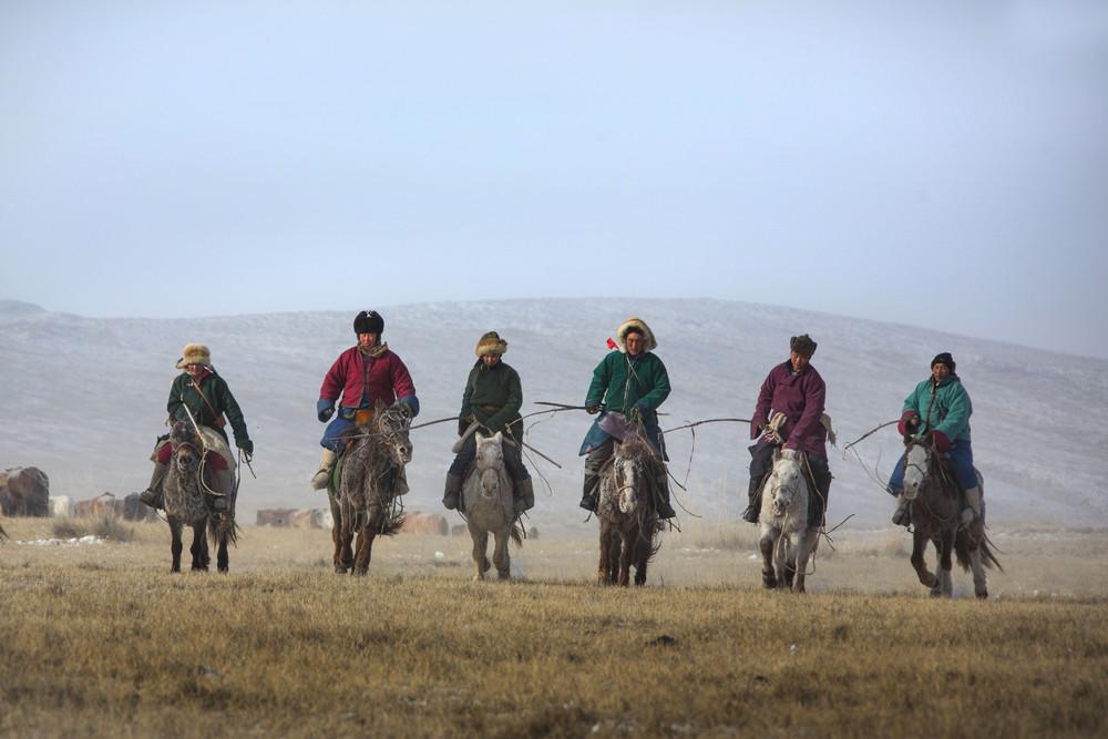 Соревнования монгольских ковбоев