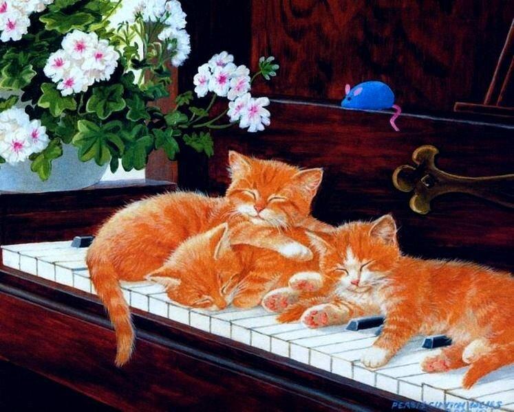 Persys Clayton Weirs.jpg. О проказниках кошках. Где угодно кошки спят! Кошки спят, где захотят!