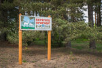 """""""Природоохранный"""" плакат на пути в деревню Ручки из Максатихи"""