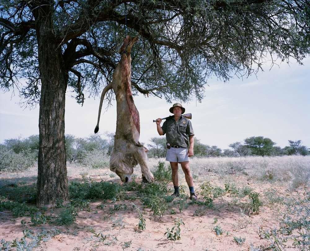 Охотник с застреленным львом, Калахари, Южная Африка