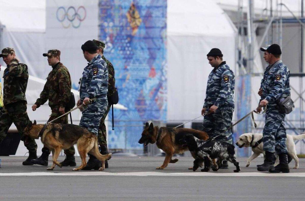Кинологи со служебными собаками в круглосуточном режиме заняты поиском взрывчатых веществ (2)