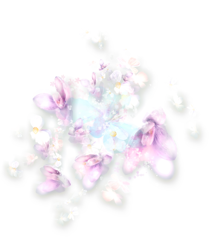 NLD Addon Floral Overlay.png