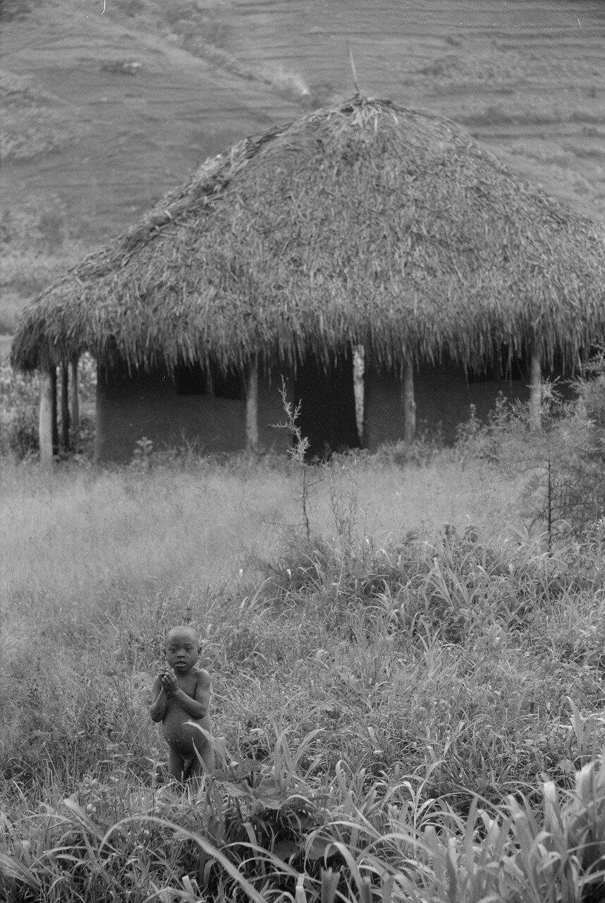 Afrika, Kongoreise