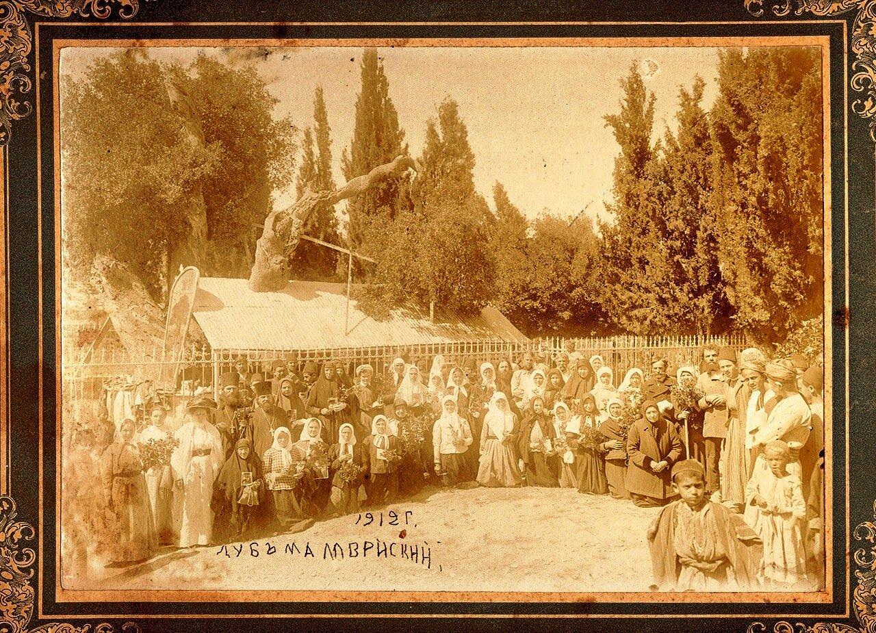 Дуб Мамврийский 1912