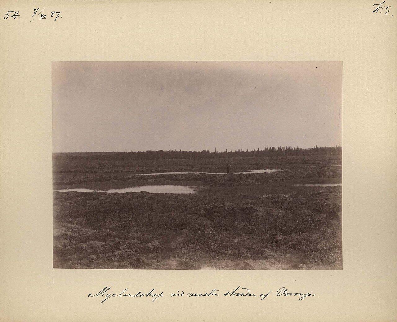 17.7.1887 в 7-8 часов утра. Заболоченная местность на Вороньем острове