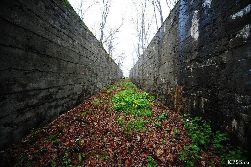 Опорные пункты Владивостокской крепости