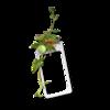 RRD_EK_GardenFresh cluster B.png