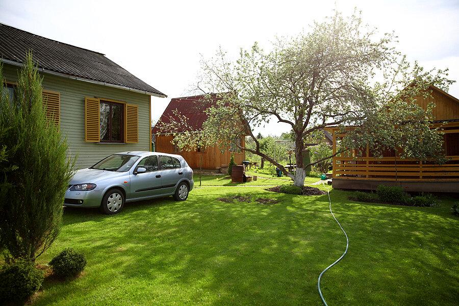 дача газон