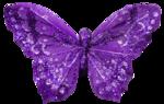 Lavender Paradise (75).png