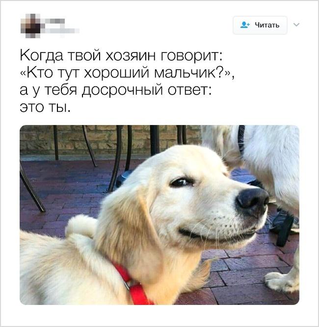 © megalot_/twitter      5.
