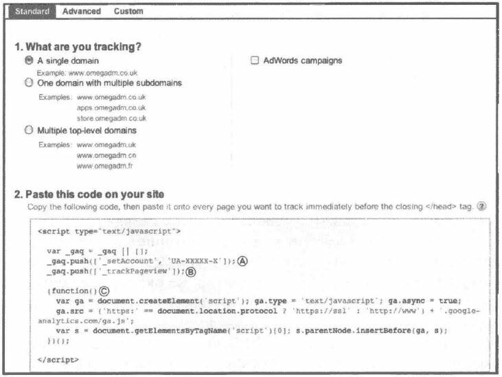 Рис. 6.3. Типичный GATC, добавляемый к страницам