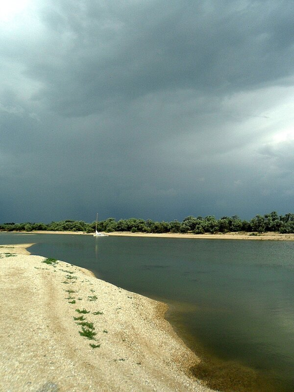 У Азовских берегов, лето 2013