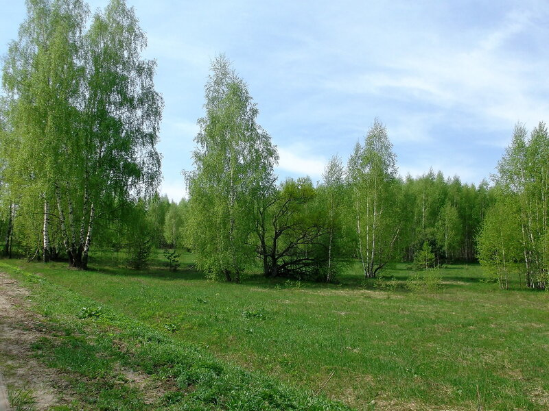 http://img-fotki.yandex.ru/get/6712/79794478.42/0_91789_829328a9_XL.jpg